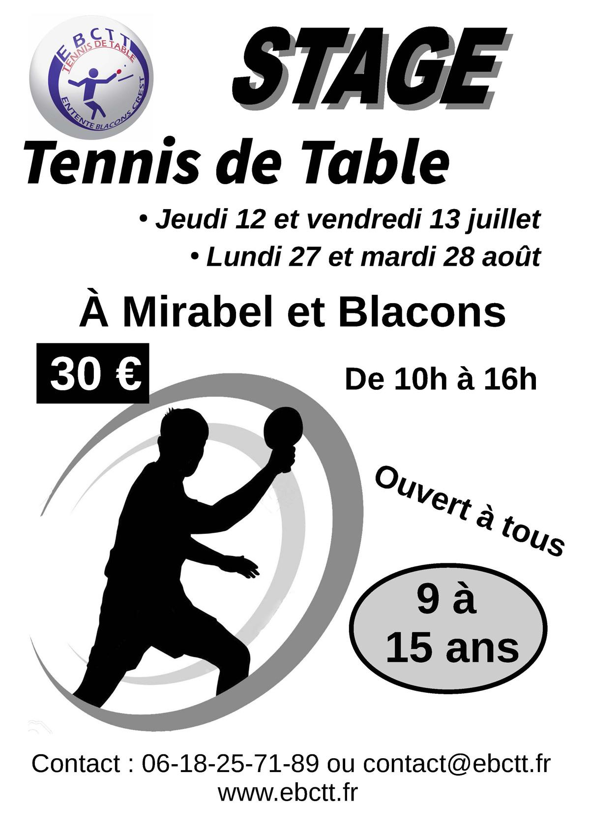 Stage-tennis-de-table-ete-2018